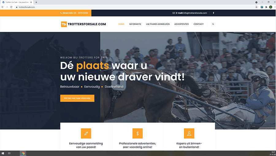 Websites van Dilling Design